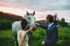diy-barn-wedding-tasmania-adam-gibson-photography 01