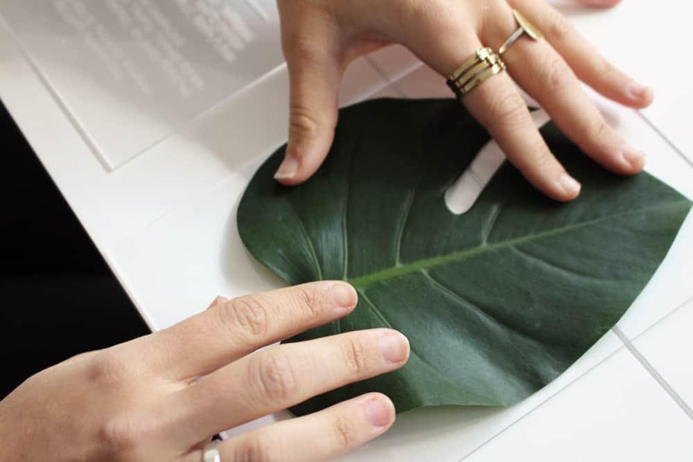 DIY botanic perspex menu