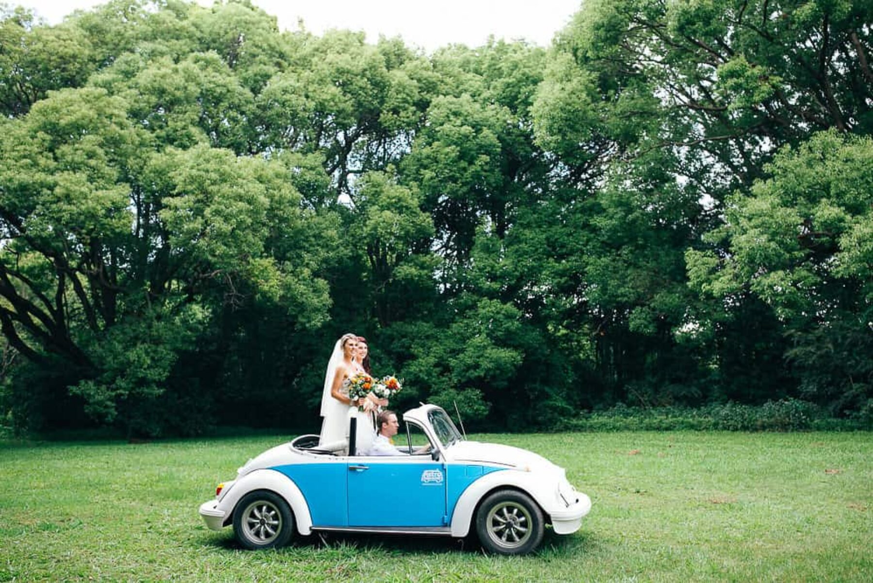 vintage buggy wedding car