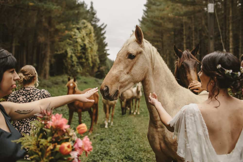 Top 10 weddings of 2016 - Old Forest School wedding photography by Danelle Bohane