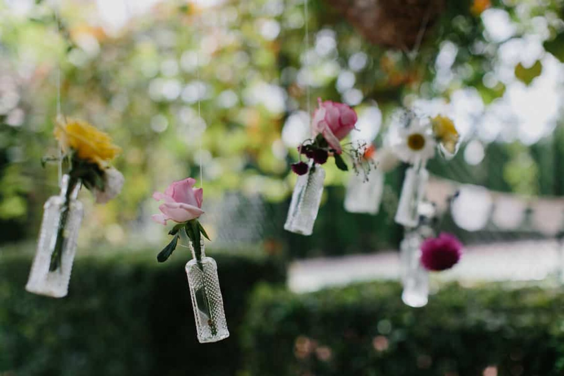 hanging flowers in bottles