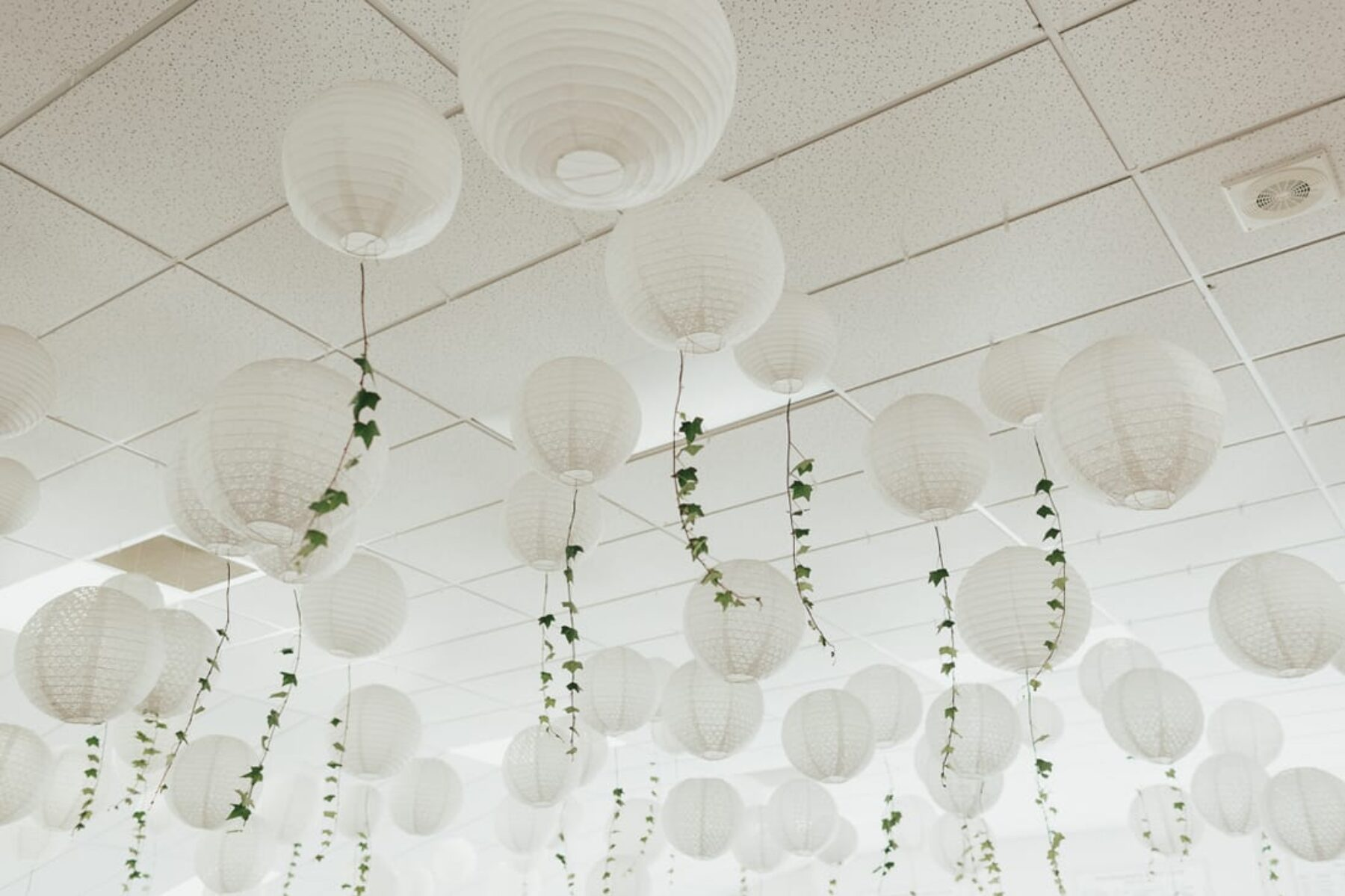 white lanterns with hanging ivy