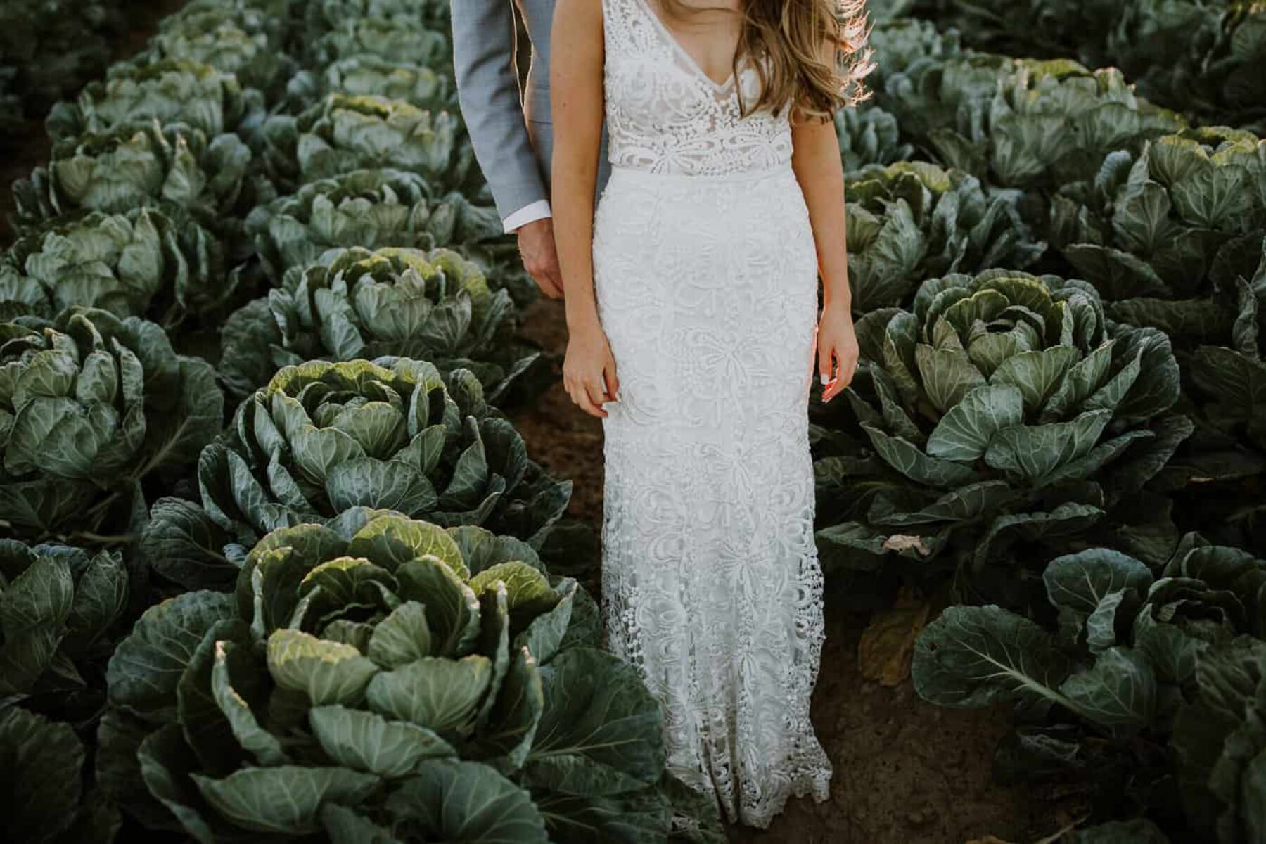 bride and groom in brussels sprout farm