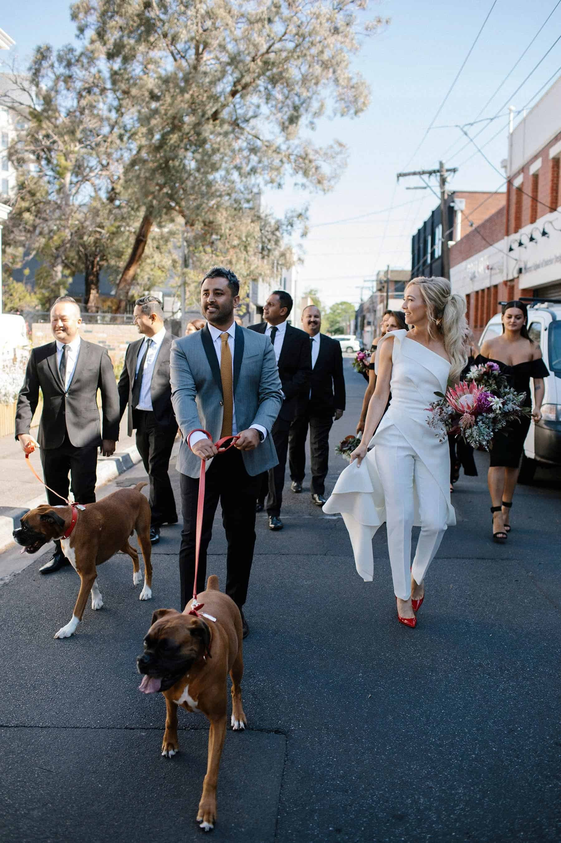 modern bridal party with dogs